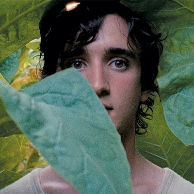 happy-as-lazzaro