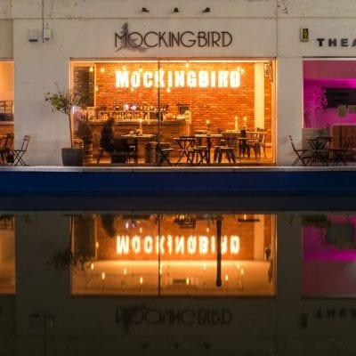 mockingbird-pool